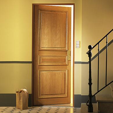 portes d 39 entr e portes d 39 appartement portes d 39 int rieur s parations de pi ces portes de. Black Bedroom Furniture Sets. Home Design Ideas